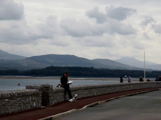 Artist working in Beaumaris