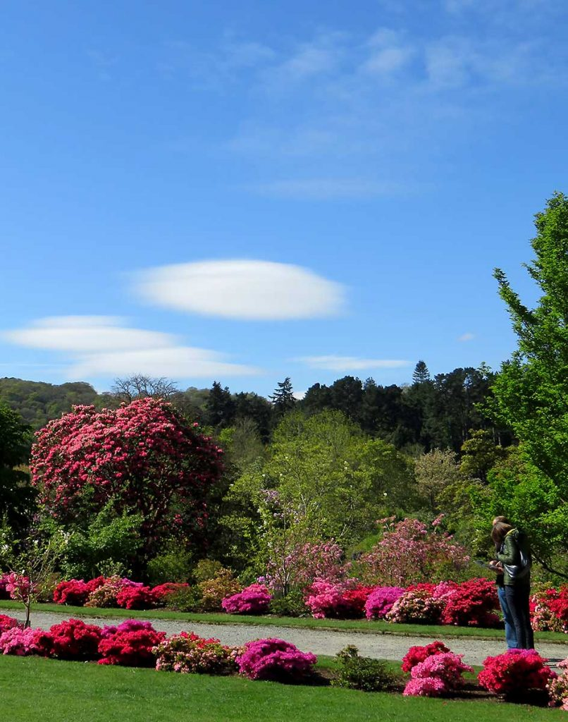 Clouds and colour at Bodnant Gardens