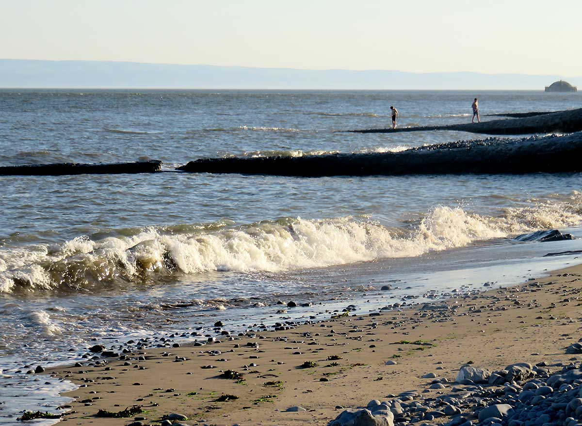 Groynes and cooling tower on East Aberthaw Beach