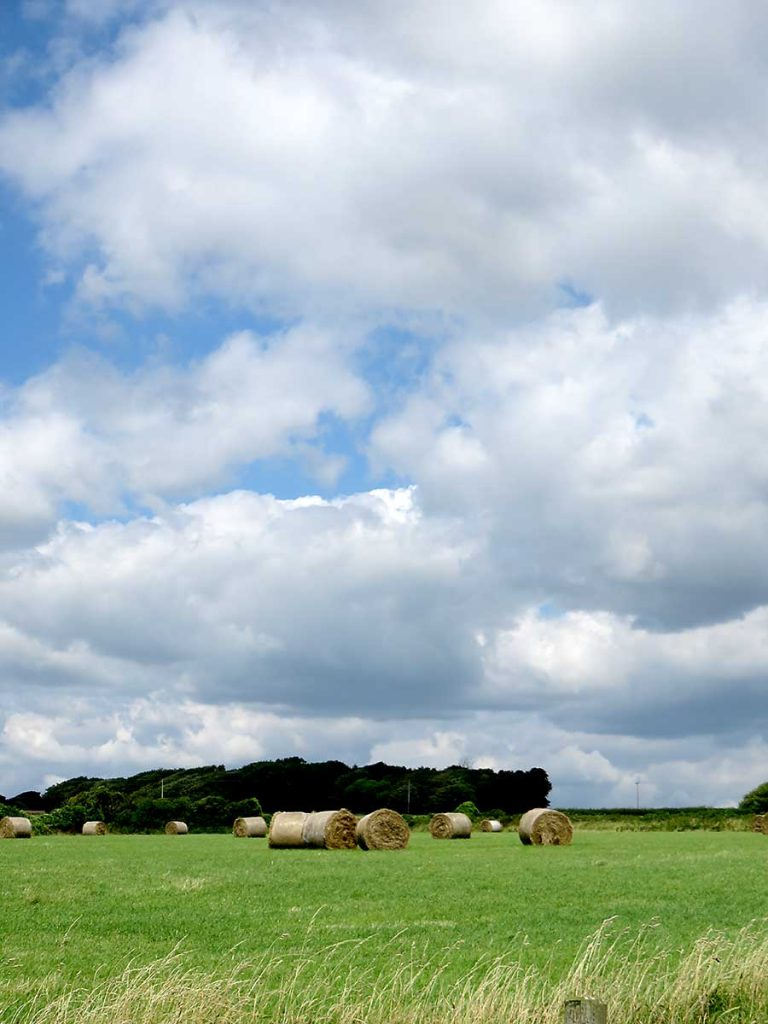 Hay bales and clouds