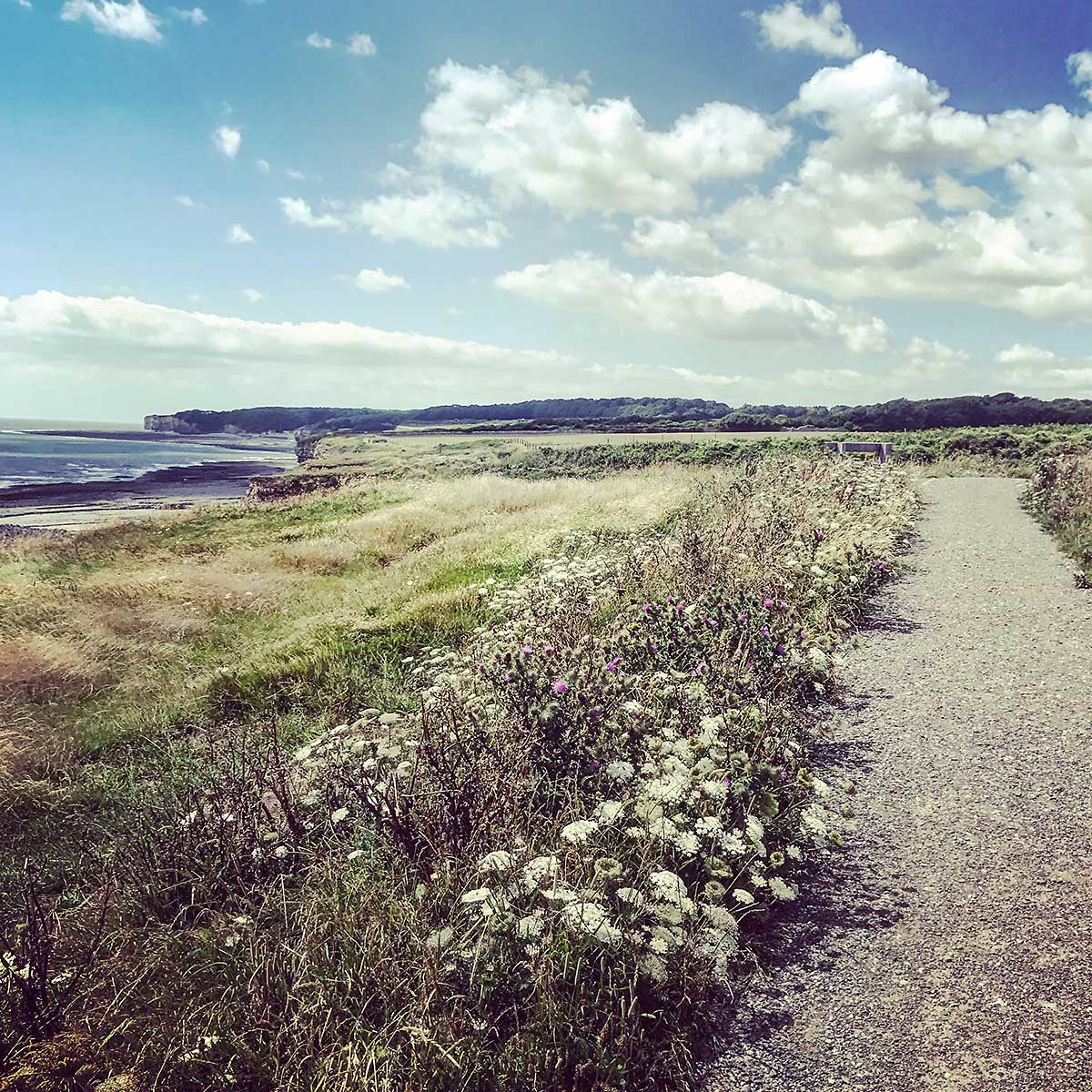 Instagrammed view across of the path to St Donats