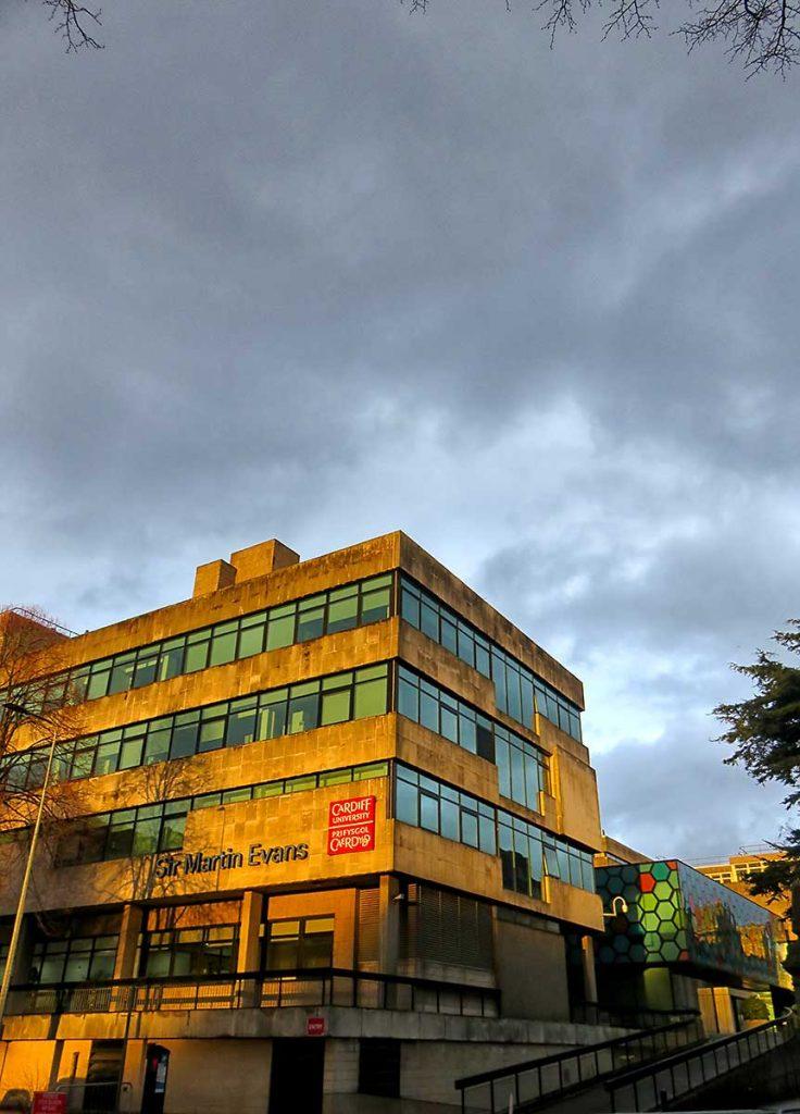 Golden hour shower light on Cardiff University